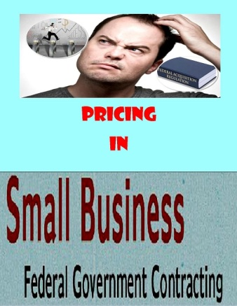 Pricing Small Business Federal Government Service Contracts | Rose