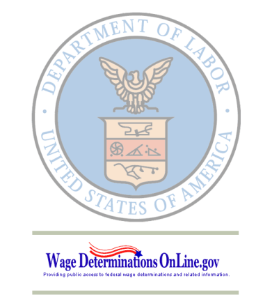 departmentoflabor wage rate